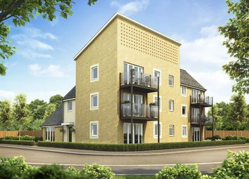 "Thumbnail 2 bedroom flat for sale in ""Apartment Block 3"" at Plover Road, Stanway, Colchester"