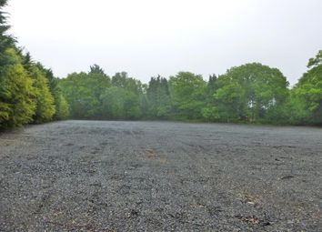Thumbnail Land to let in St Patricks Lane, Rake, Liss, Hampshire