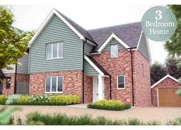 Thumbnail 3 bed detached house for sale in Furneux Pelham, Buntingford