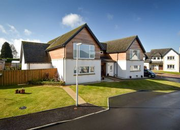 Thumbnail 5 bedroom detached house for sale in 20 Beechgrove Rise, Cupar