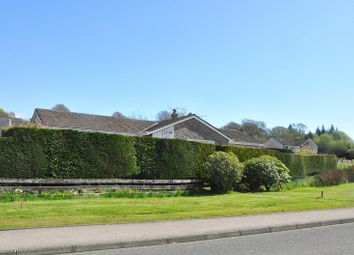 Thumbnail 5 bed bungalow for sale in Whitegates Road, Lochgilphead