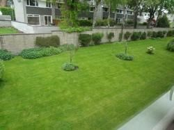 Thumbnail 1 bed flat to rent in Belhaven Place, Morningside, Edinburgh