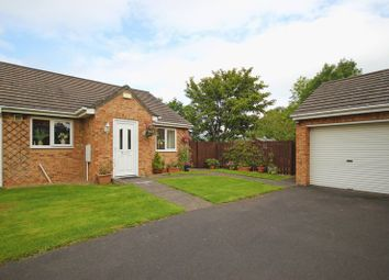 Thumbnail 2 bed bungalow for sale in The Showfield, Haydon Bridge, Hexham