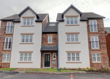 Thumbnail 2 bed flat for sale in Willow Lane, Dumfries