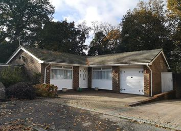 Thumbnail 3 bed detached bungalow for sale in Pitsham Wood, Midhurst
