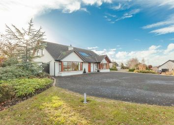 Thumbnail 4 bed detached house for sale in Waterloo Road, Lisburn, County Antrim