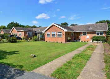 Thumbnail 3 bed detached bungalow for sale in The Paddocks, Normandy, Guildford