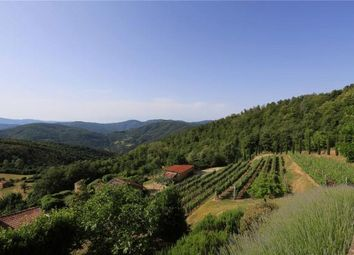 Thumbnail 3 bed farmhouse for sale in Sopra di Brena, San Pietro A Dame, Cortona, Tuscany
