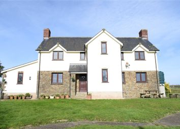 Thumbnail Detached house for sale in Shebbear, Beaworthy