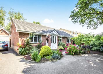 Thumbnail 2 bed detached bungalow for sale in Batstone Way, Ferndown