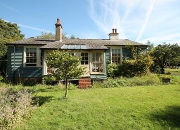 Thumbnail 4 bed detached house to rent in Abinger Lane, Abinger Common, Dorking