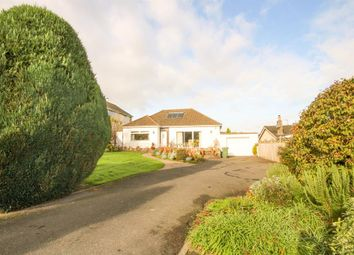 Thumbnail 3 bed detached bungalow for sale in Charfield Hill, Charfield, Wotton-Under-Edge