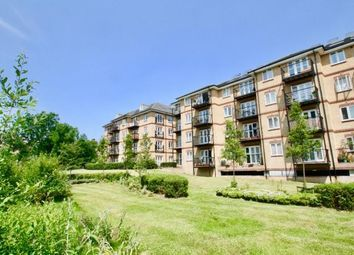 Thumbnail 2 bed flat to rent in Versailles Road, London