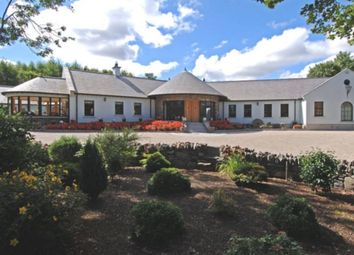 Thumbnail 4 bed detached house for sale in Mearne Road, Downpatrick, County Down