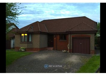 Thumbnail 3 bed bungalow to rent in Lathro Park, Kinross
