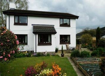 Thumbnail 3 bed property to rent in Ty Nant, Llanilar, Aberystwyth