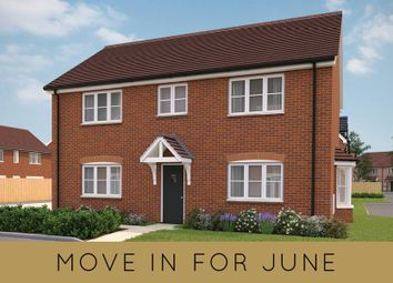 """Thumbnail 4 bed semi-detached house for sale in """"The Chichester Lenham Semi Detached"""" at Shopwhyke Road, Chichester"""