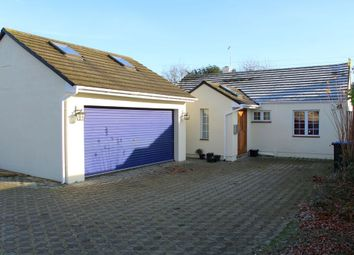 Thumbnail 4 bed bungalow for sale in Rosemary Lane, Thorpe Village