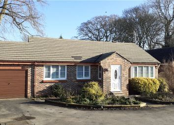 3 bed bungalow for sale in Kings Mead, Ripon, North Yorkshire HG4