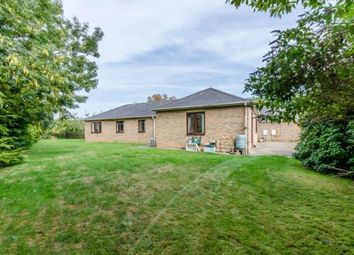 Thumbnail 4 bed bungalow for sale in Cantelupe Road, Haslingfield, Cambridge
