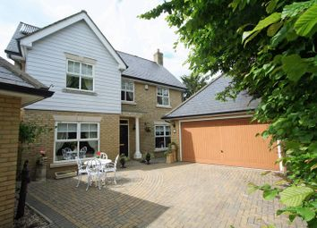 Thumbnail 4 bed detached house to rent in Elysian Close, Ely