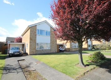 Thumbnail 3 bed detached house for sale in Ainderby Grove, Stockton-On-Tees