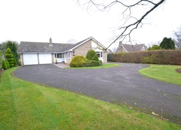 Thumbnail 4 bedroom detached bungalow for sale in Links View, Newton, Sudbury