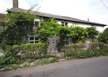 Thumbnail 4 bed semi-detached house for sale in Dewlish, Dorchester