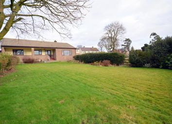 Thumbnail 3 bed bungalow for sale in Seven Steps, Hamsterley, Bishop Auckland
