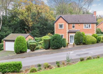 Thumbnail 5 bed detached house for sale in Allerburn Lea, Alnwick