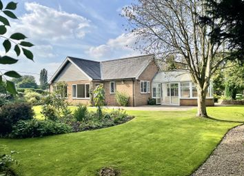 Thumbnail 2 bed detached bungalow to rent in South Kilvington, Thirsk