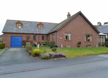 Thumbnail 4 bed detached house for sale in Ty Mawr, Rhosymaen Uchaf, Llanidloes, Powys