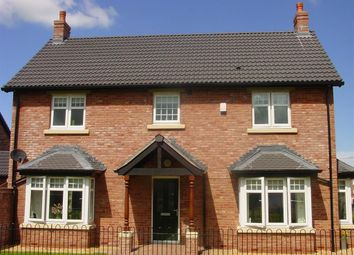 Thumbnail 4 bed detached house to rent in Turnstone Drive, Turnstone Park, Carlisle