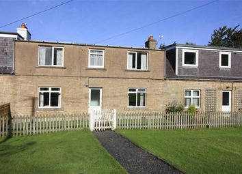 Thumbnail 3 bed terraced house for sale in Kinninghall Farm Cottages, Cavers, Hawick