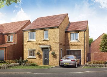 "Thumbnail 3 bed detached house for sale in ""The Hampton"" at Morton On Swale, Northallerton"