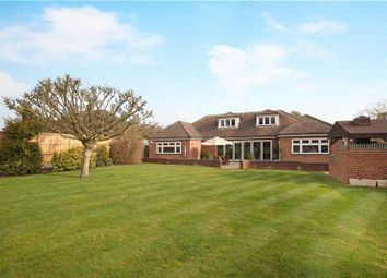 Thumbnail 5 bed detached bungalow to rent in Rickmansworth WD3,