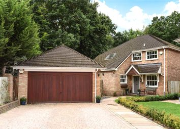 Thumbnail 4 bed detached house for sale in France Hill Drive, Camberley, Surrey