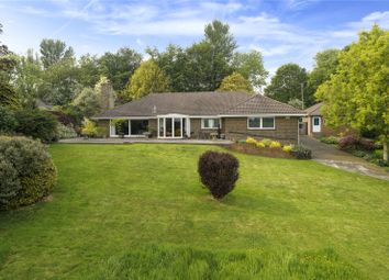 Thumbnail 4 bed bungalow for sale in Old Hawkinge, Folkestone, Kent