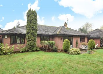 Thumbnail 3 bed detached bungalow for sale in Windlesham, Surrey