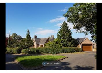Thumbnail 3 bed bungalow to rent in Sunnyside Main Street, Atherstone