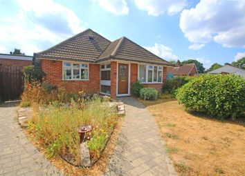 Thumbnail 4 bed bungalow for sale in Addlestone, Surrey