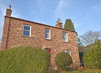 Thumbnail 2 bed flat for sale in David Street, Blairgowrie