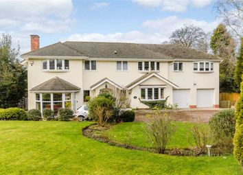 Thumbnail 6 bed detached house for sale in Squirrel Walk, Sutton Coldfield, West Midlands