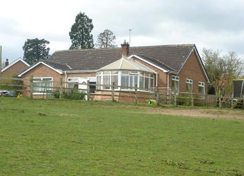 Thumbnail 4 bedroom detached bungalow for sale in Newby Wiske, Northallerton