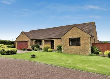 Thumbnail 3 bed detached house for sale in Kings Ride, Chard