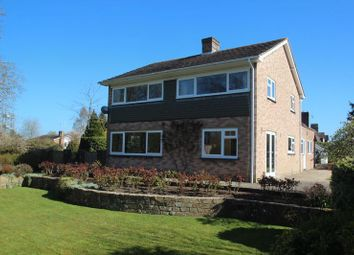 Thumbnail 3 bed detached house to rent in Green Square, Wadhurst