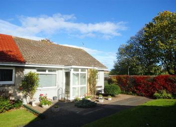 Thumbnail 2 bed bungalow for sale in 3, Pitcruvie Park, Lundin Links, Fife
