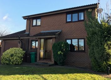 Thumbnail 4 bed detached house to rent in Kynance Gardens, Wilford, Nottingham
