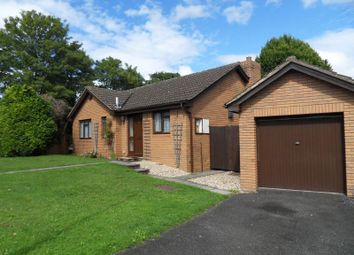 Thumbnail 2 bed bungalow to rent in The Pippins, Wilton, Ross-On-Wye