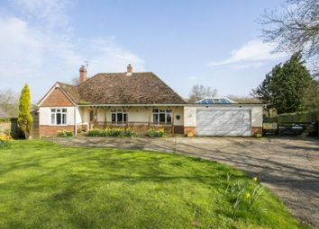 Thumbnail 4 bed equestrian property for sale in Watermill Lane, Bexhill-On-Sea, East Sussex
